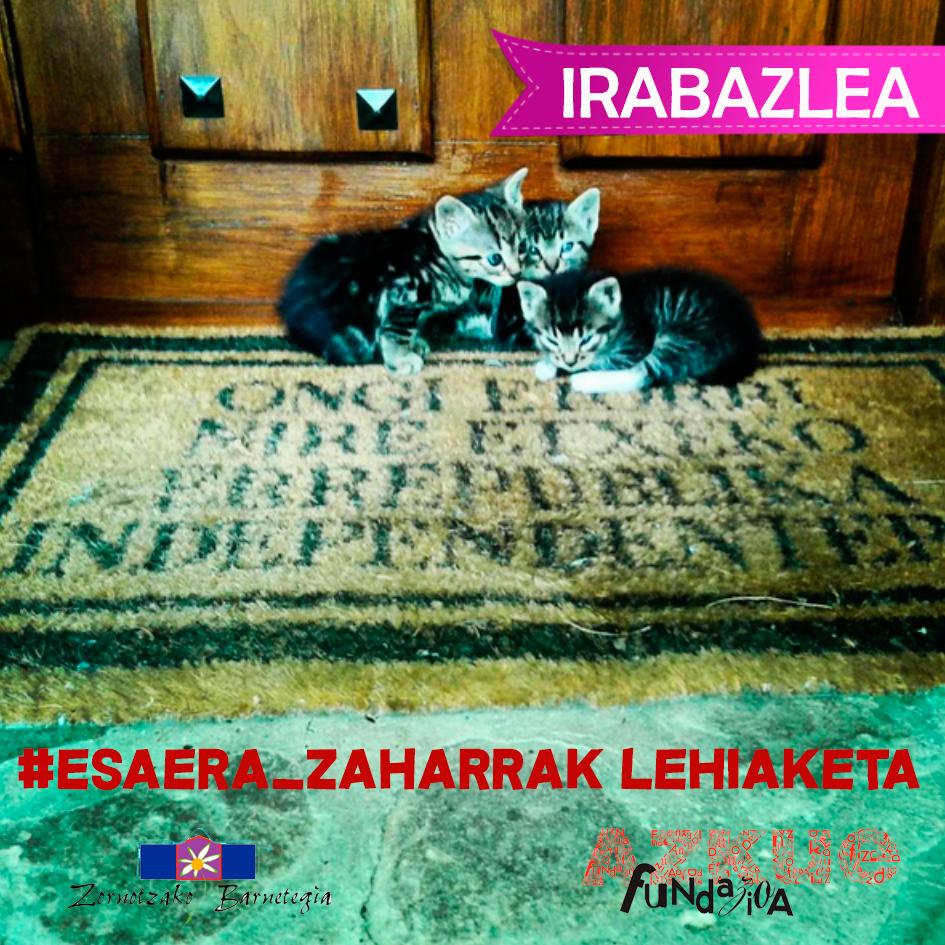 EsaeraZaharrak-Irabazle-Nagusia-wasimbo