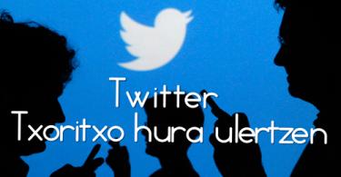 Twitter-ikastaroa