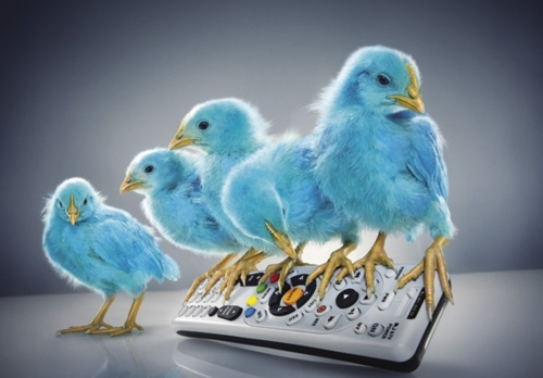 tv-twitter
